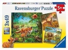 Ravensburger Krajiny živočíchov 3x49d